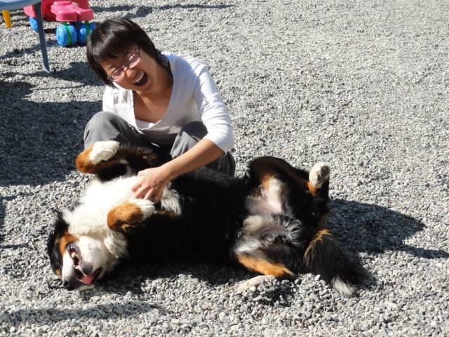 Picture:  Charlie gets a tummy rub at Martin and Reta's place, Maple Ridge, B.C.