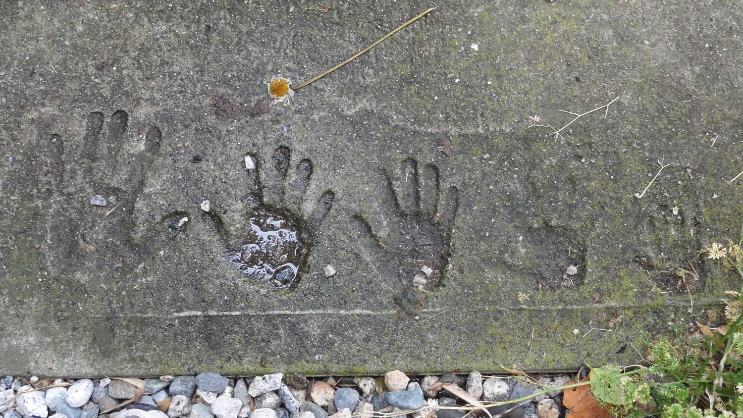 Picture:  Hand prints of the whole family in concrete beside the house we owned in Gibsons Landing, B.C., Canada.