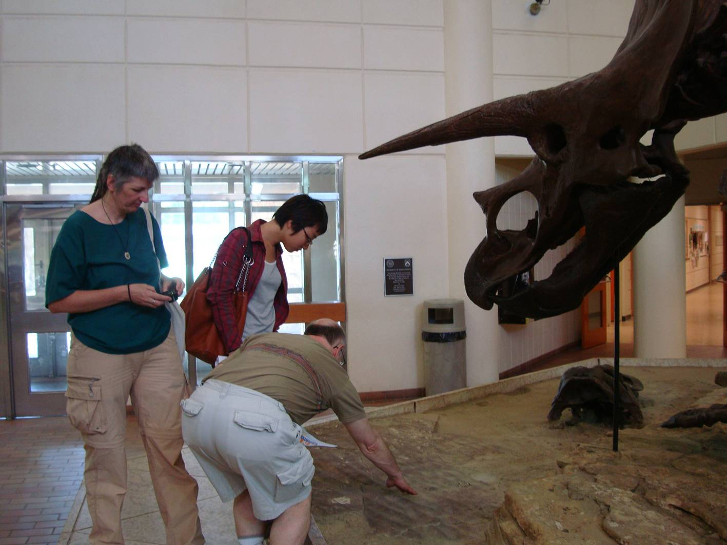 Picture:  Most people look at the dinosaur.  Kim, the geologist, directed our attention to the fossils in the stones the display was standing on.