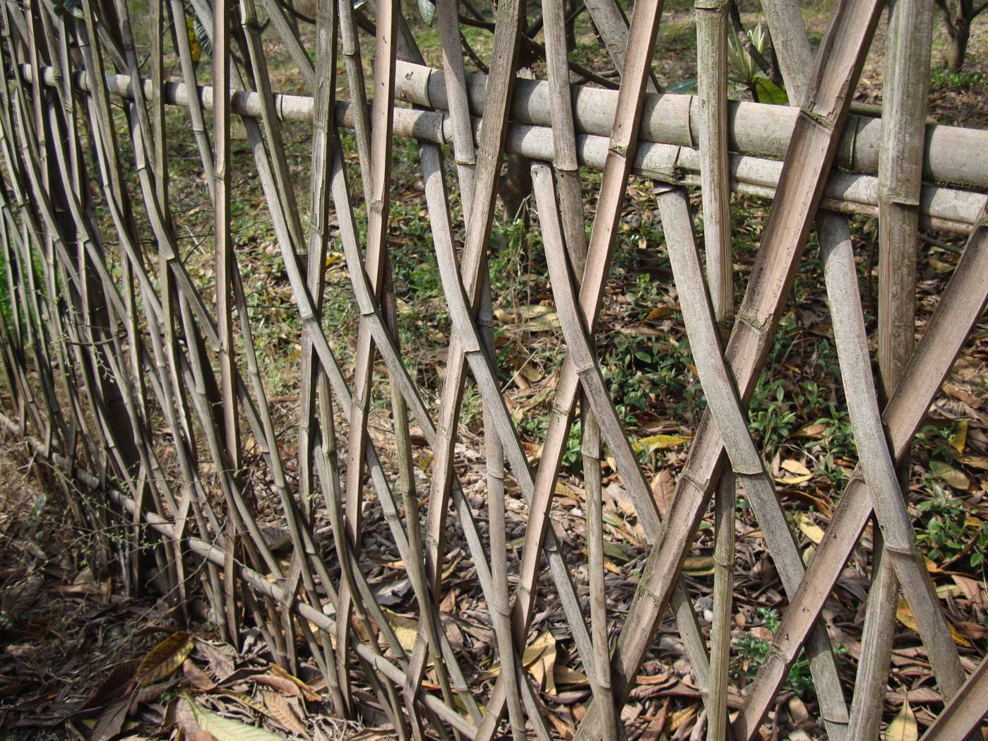 Picture:  Bamboo strip fence.  Yang Shan, Wuxi, China