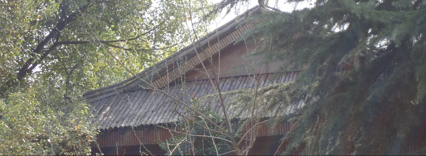 Picture:  A large roof made of real bamboo, now widely imitated by ceramics.  Yang Shan, Wuxi, China
