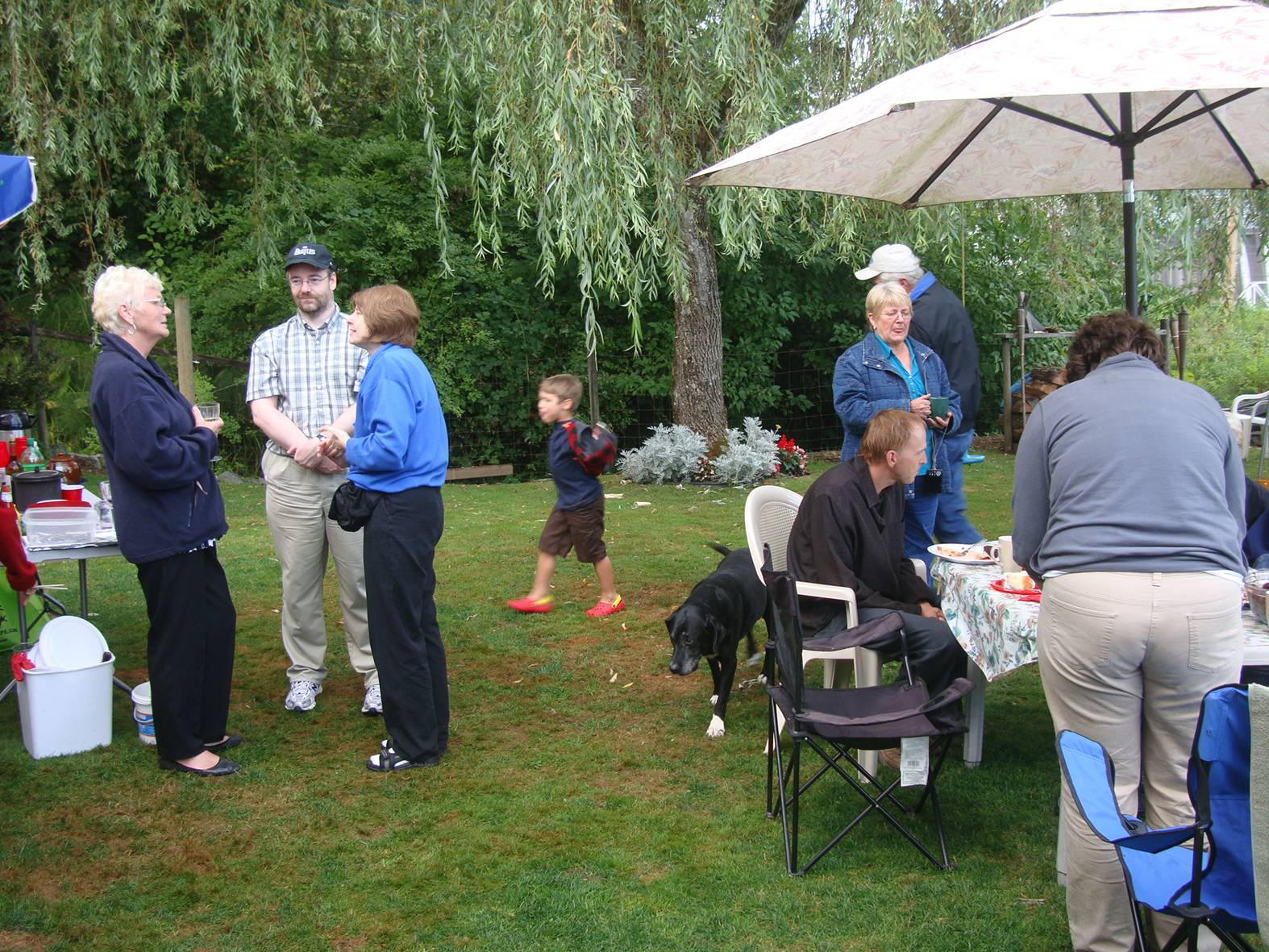 picture: the wedding party in Ruskin, B.C.  High overcast but no rain. Perfect.