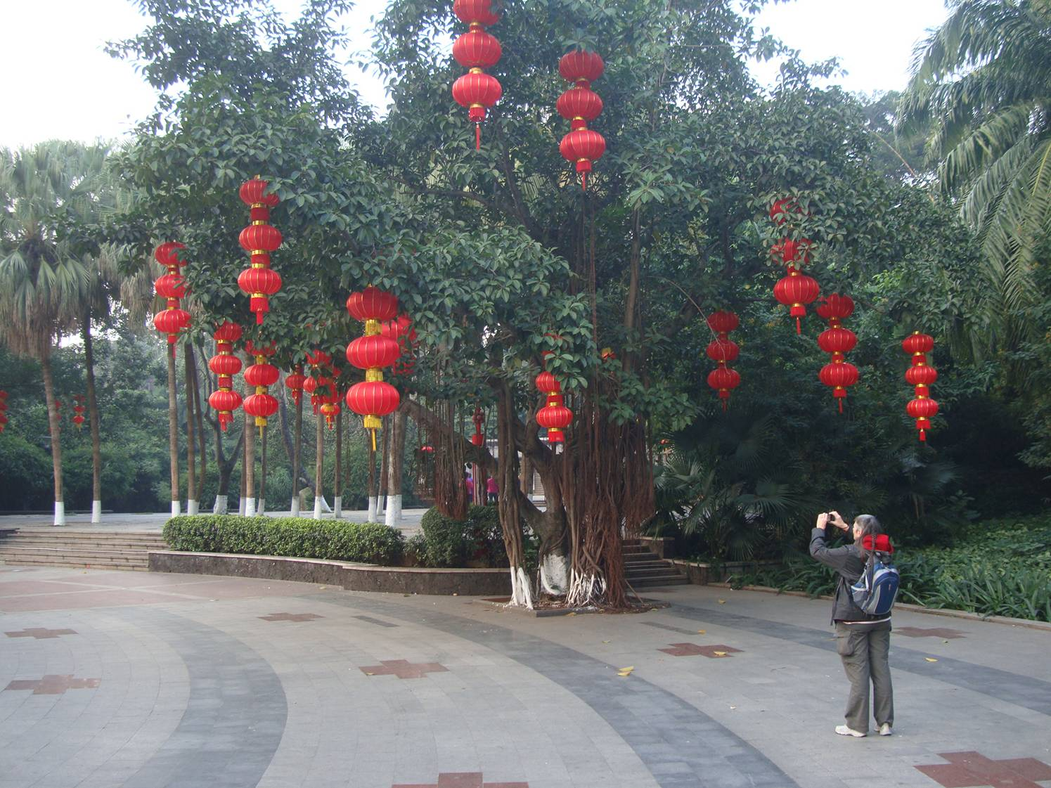 Picture:  The park in downtown Haikou is beautiful, and on the Chinese New Year's Eve it was all but deserted.  Haikou, Hainan Island, China
