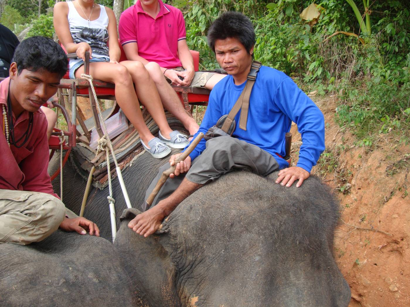 Picture:  The elephant mahouts, Phuket Island, Thailand