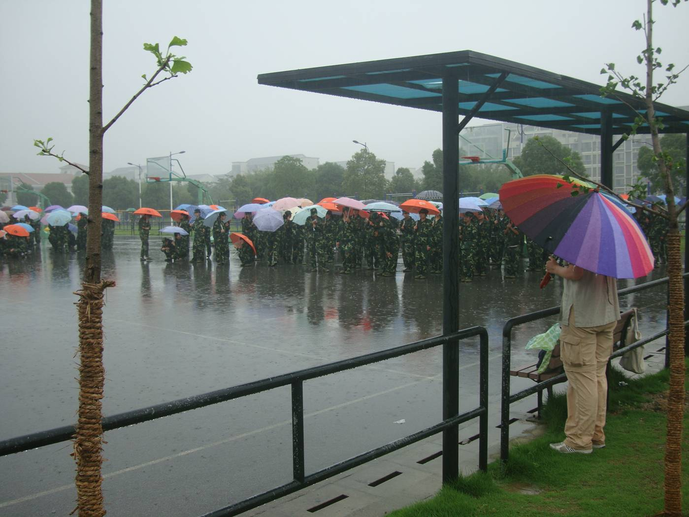 Picture:  Freshmen hold umbrellas during military training.  Jiangnan University, Wuxi, China