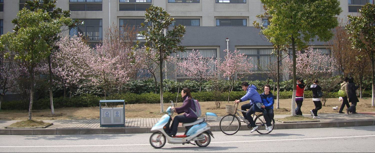 Spring has come to Jiangnan University and the cherry blossoms are out.  Wuxi, China
