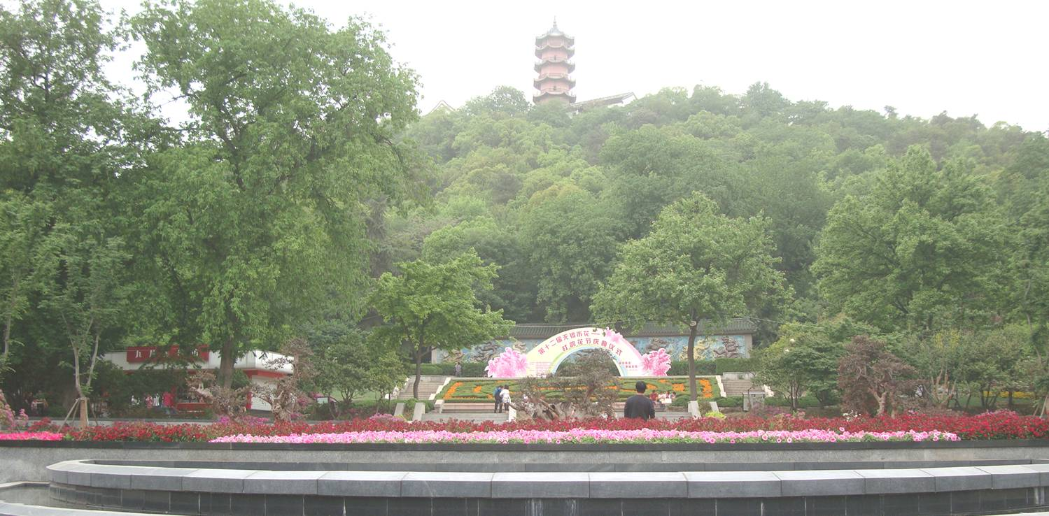 Picture:  Flowers in bloom below the pagoda on the hill.  Xi Hui Park, Wuxi, China