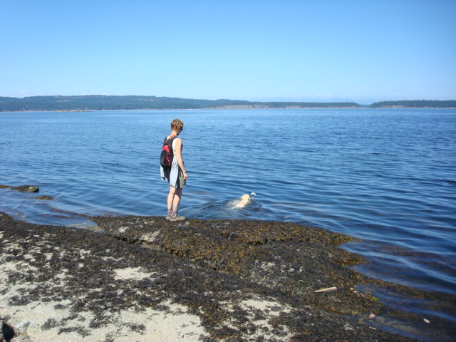 Goody and Abby (the swimmer) at Boat Harbour,  Vancouver Island,  B.C.