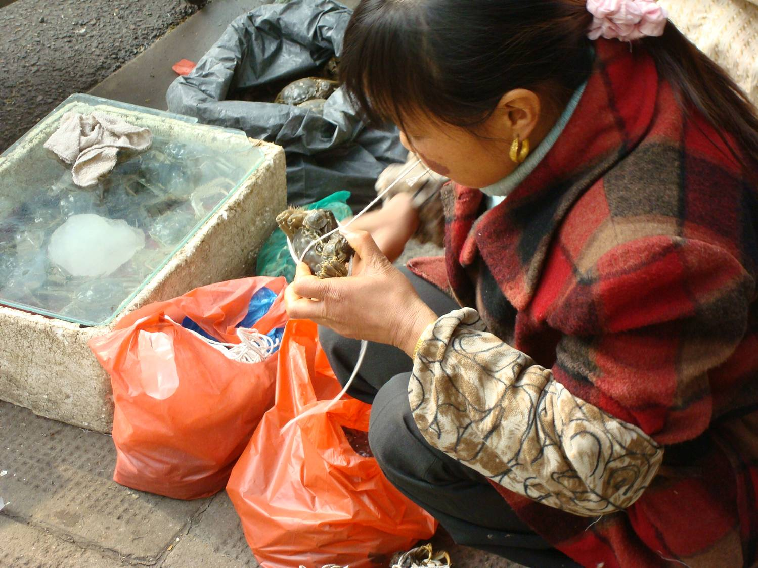 tying live crabs on the streets of Shanghai