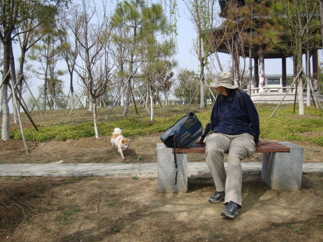 Picture: Ruth and GouGou enjoy the Spring warmth on the campus Peninsula Park.  Jiangnan University, Wuxi, China